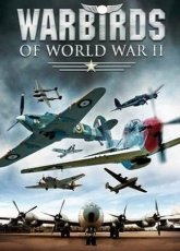 Игра WarBirds - World War II Combat Aviation